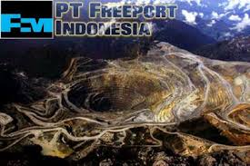 PT Freeport Indonesia (Foto: Istimewa)