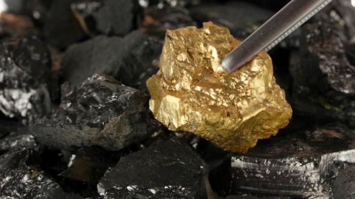 Ilustrasi emas. | Foto : Istimewa.