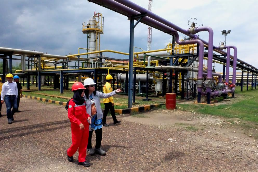 FLokasi Produksi PT GFI di Tuban, Jawa Timur   Foto : Istimewa