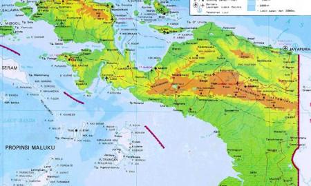 Peta Papua.   Foto : Istimewa.
